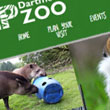 Dartmoor Zoo