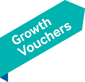 Growth Voucher